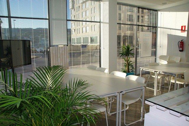 צמחים מלאכותיים במשרד